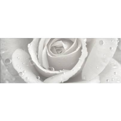 Декор STG/A289/15000