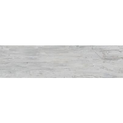 SG301300R